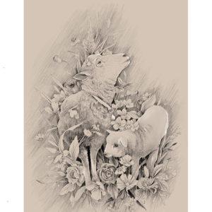 ovelhas – art print
