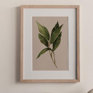 louro – art print